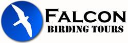 Falcon Birding Tours